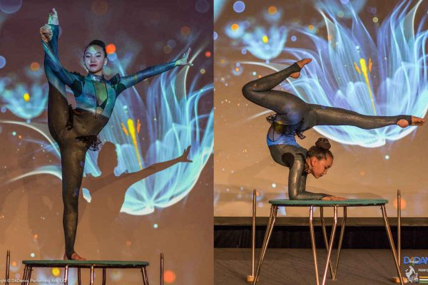 Acrobatics Performance |31st May 2018 | Hilton Park Corporate Event